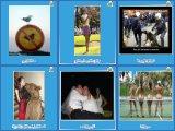 Zonx.de - PicDump 065 - Sportliches Publikum