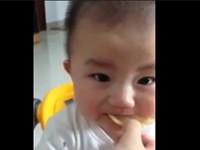 Baby beisst in eine Zitrone