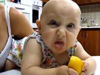 Babys essen das erste mal Zitrone - Compilation