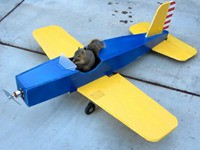 Eichhörnchen stiehlt Modellflugzeug
