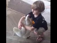 Ein Huhn umarmen