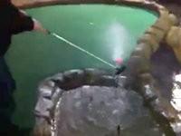 Genialer Minigolf-Spieler