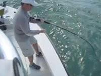 Hai schnappt Angler den Fisch weg