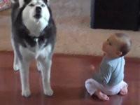 Hund ahmt Baby nach