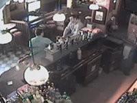 Katze rastet aus in Bar