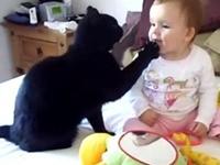 Katzen lieben Babys - Compilation