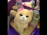 Krasse Spielzeug-Katze