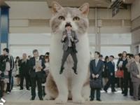 Kuriose Werbung für Kaugummis aus Japan