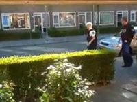 Polizistin von Baum niedergestreckt!