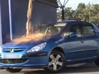 Streich: Taube schei*** auf Auto