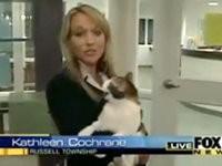 Tiere hassen Reporter - Compilation