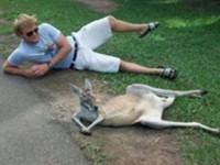 Währenddessen in Australien #2