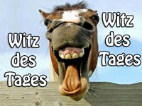 Witz - Volkszählung