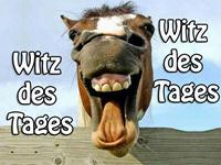 Witz - Wein im Tetra Pak